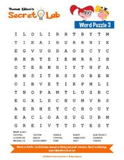 Word Puzzle 3