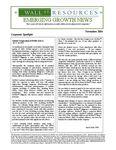 November 2004 Newsletter