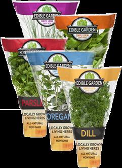 Living 4u2033 Potted Herbs. Description: Edible Garden ...