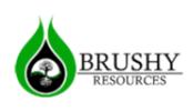 Brushy Resources