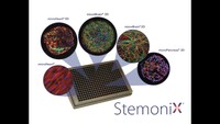 StemoniX Products and Services PREDiCT 3D 2020 – Overview of StemoniX capabilities