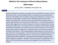 Chronic Kidney Disease White Paper