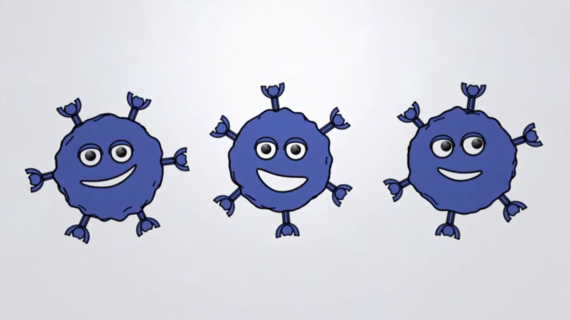 Mecanismo de Acción del ADP-A2M4CD8 (SPEAR-T cell de próxima generación)