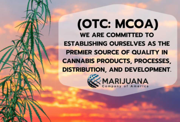 Jesus Quintero, CEO of Marijuana Company of America Inc.,Discusses Potential of Recent Developments in Audio Interview with SmallCapVoice.com