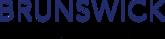 Visit Brunswick Dealer Advantage's website