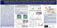 2019 ASH Poster - Synergistic Targeting of BTK and E-Selectin/CXCR4 in the Microenvironment of Mantle Cell Lymphomas