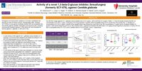 Activity of a novel 1,3-beta-D-glucan inhibitor, Ibrexafungerp (formerly SCY-078), against Candida glabrata