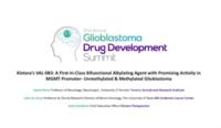Glioblastoma Drug Development Summit