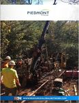 Piedmont Lithium - Resource Global Network