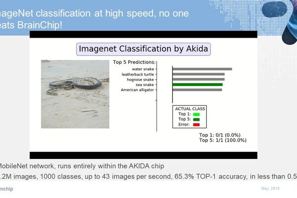 Akida imagenet running on mobilenet :: BrainChip Holdings Ltd