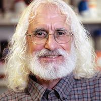 Dr. Phil Greenberg