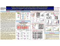 2017 ASH Poster - CG'806, a Novel Pan-FLT3/BTK Multi-Kinase Inhibitor, Induces Cell Cycle Arrest, Apoptosis or Autophagy in AML Cells Depending on FLT3 Mutational Status