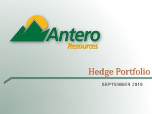 2019 Hedge Portfolio