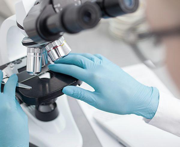 Cibler la dysfonction mitochondriale