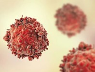 BXCL701, Immune Checkpoint Inhibitors Combo Holds Promise for Castration-resistant Prostate Cancer Patients
