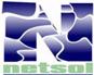 NetSol Technologies, Inc.