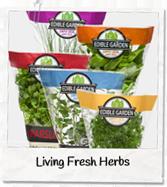 living-herbs-p
