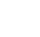 VF Solutions logo