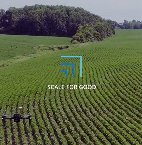 Scale for Good