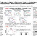 CF-301, a Phage Lysin, is Superior in Combination Therapy to Antistaphylococcal Antibiotics Alone in Murine Staphylococcus aureus Bacteremia