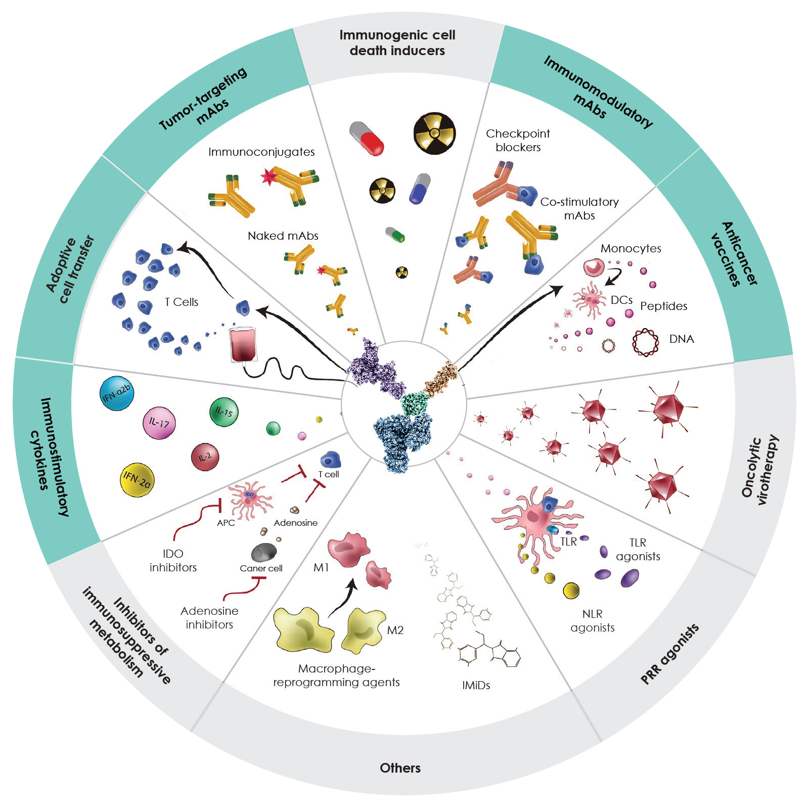 A Modular Drug Development Platform