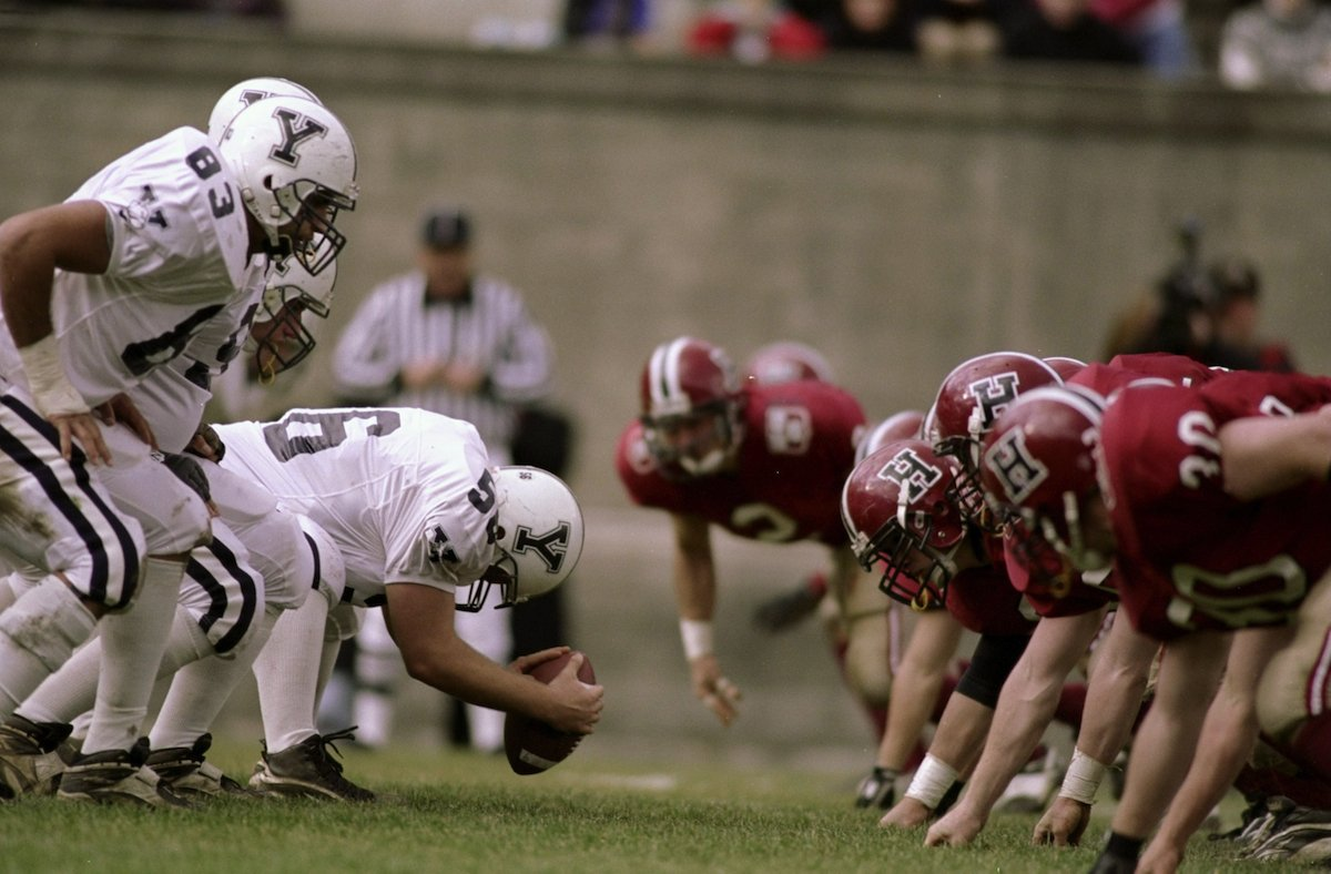 it-might-protect-the-brain-from-concussions-and-trauma