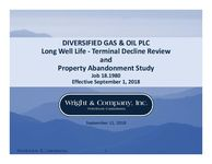 Long Well Life ‐ Terminal Decline Review and Property Abandonment Study