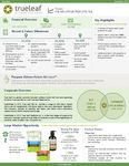 Investor Factsheet