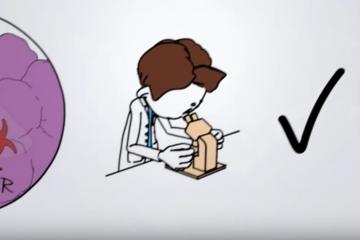 Viaje de un paciente tratado con nuestras células SPEAR T (How Cancer Patients get Treated with our SPEAR T-Cells)
