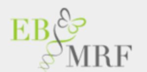 The Epidermolysis Bullosa Medical Research Foundation