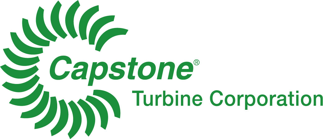 Image result for capstone logo