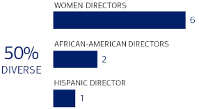 An infographic outlining the minority makeup of our board, which is 47% diverse.