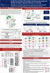 2019 ESH Poster - CG-806 Pan-FLT3/Pan-BTK Inhibitor Simultaneously Suppresses Multiple Oncogenic Signaling Pathways to Treat AML