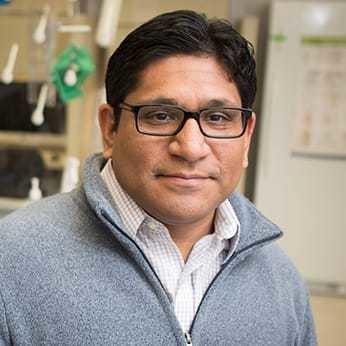 Marco Davila, MD, Ph.D.