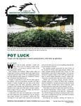 POT LUCK: Tecogen sees high opportunity in marijuana growing business, other indoor ag applications