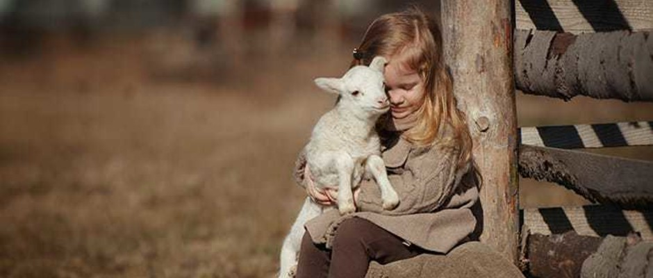 Music History Lesson: Mary Had A Little Lamb