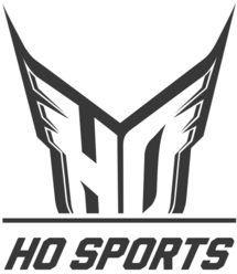 Logo for HO Sports, one of our partners