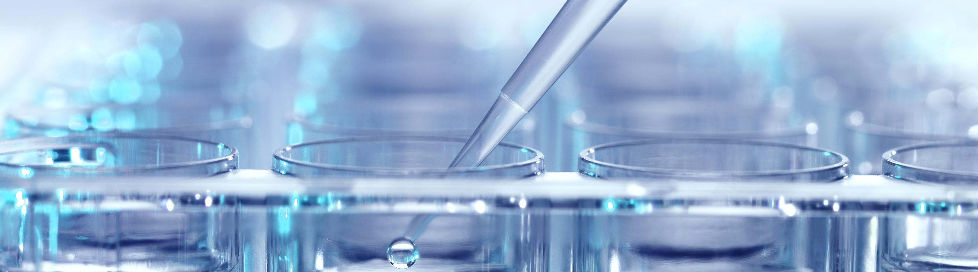 Endocannabinoid System Science Banner
