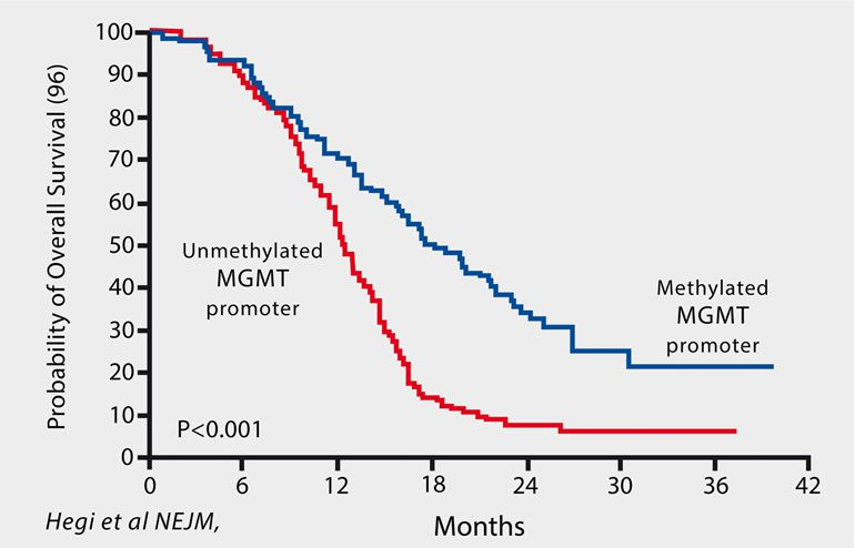 Probability of Overall Survivle of Glioblastoma Multiforme