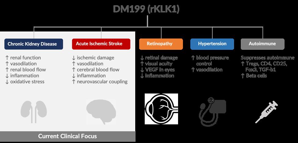 DM199 (rKLK1)