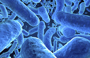 Kill Bacteria In Water With On Site Water Purification