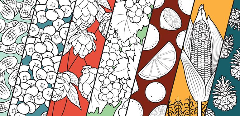 Terpenes & Flavonoids in Cannabis