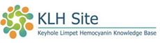 KLH Site