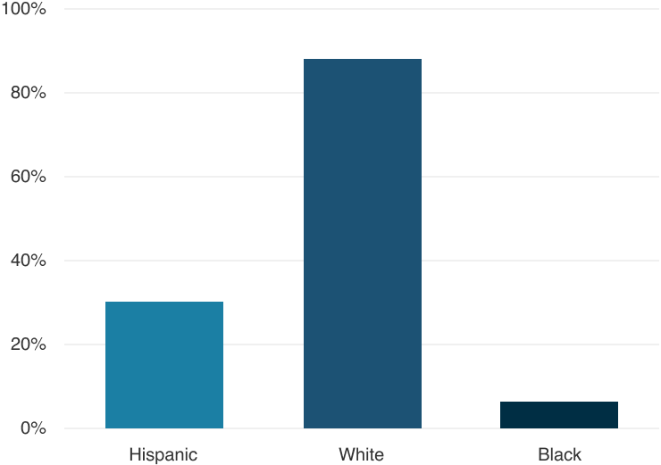 Construction industry workforce percentages by race