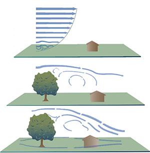 Architecture Dynamics